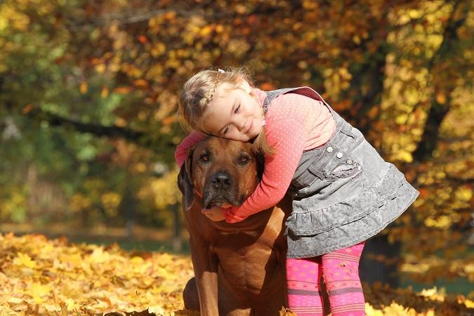 Blondes Mdchen umarmt ihren Hund (Australian Ridgeback)
